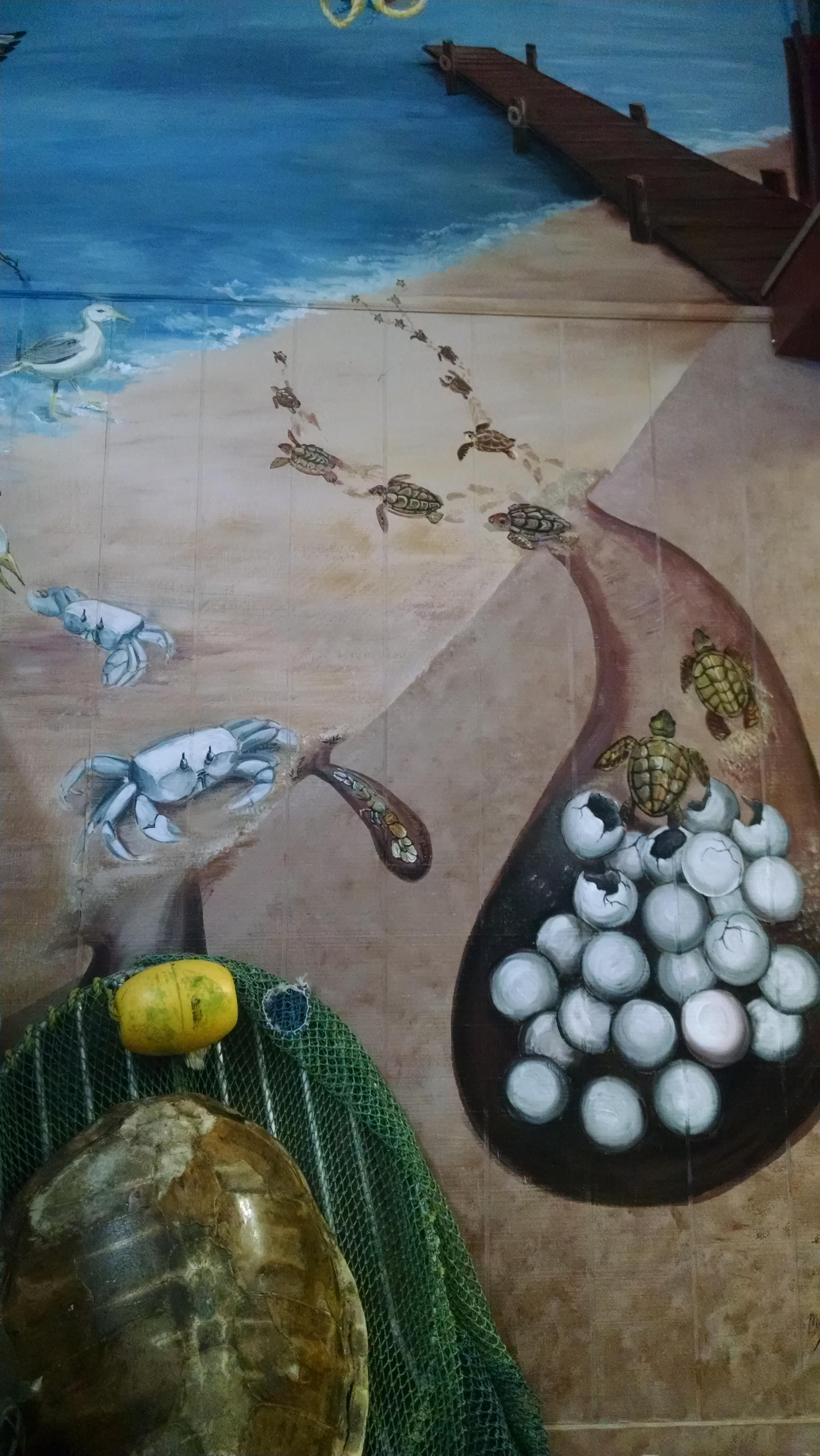 Happy Sea Turtle Nesting Season Living Porpoisefully